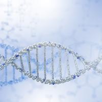Pet-DNA200