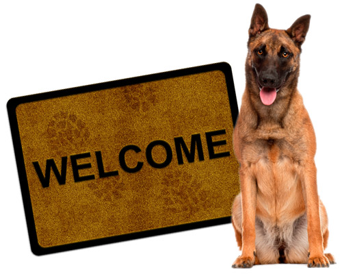 welcome-image2